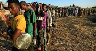 Tigray crisis