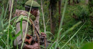 At least ten killed in a militia attack in DRC