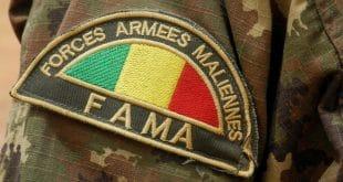 Two Malian soldiers killed in possible jihadist attack
